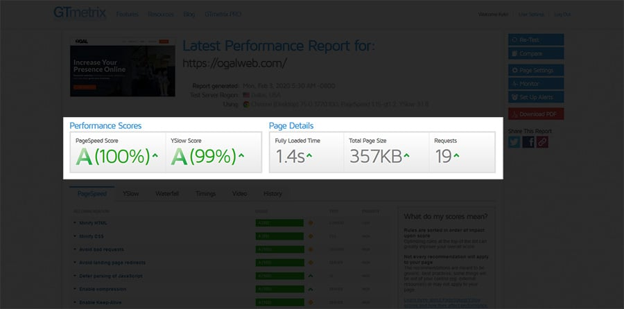Performance Scores and Page Details